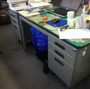 机の下にもぐって頭を守ります!