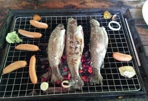 釣った魚は、その場で塩焼きにして頂きました。     とてもおいしかったです!
